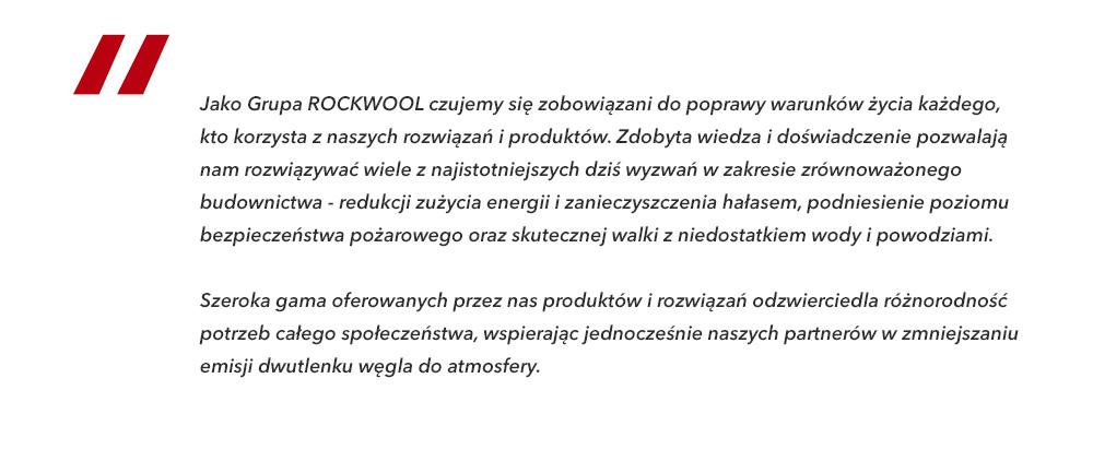 ROCKWOOL - opis o firmie - OBRAZ